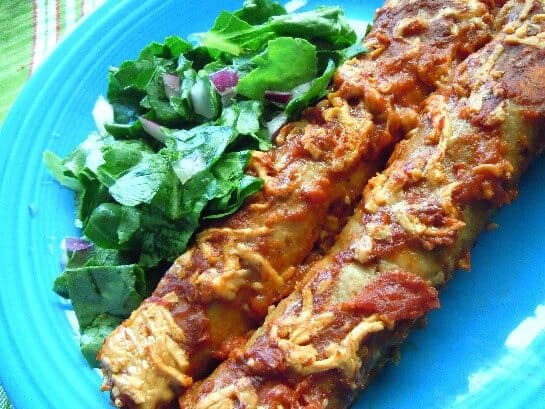 Two rolled enchiladas are covered with sauce and dairy free cheese on a turquoise plate.