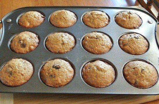 Macadamia Chocolate Chip Muffins Baked
