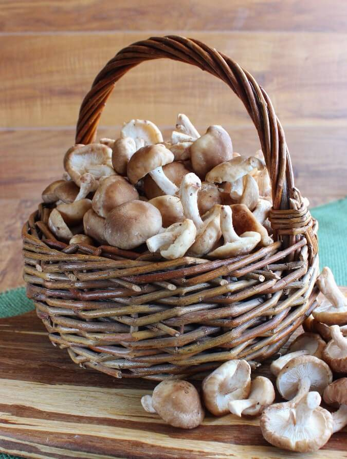 A basketfull of fresh Shiitake mushrooms spilling out onto a wooden cutting board.
