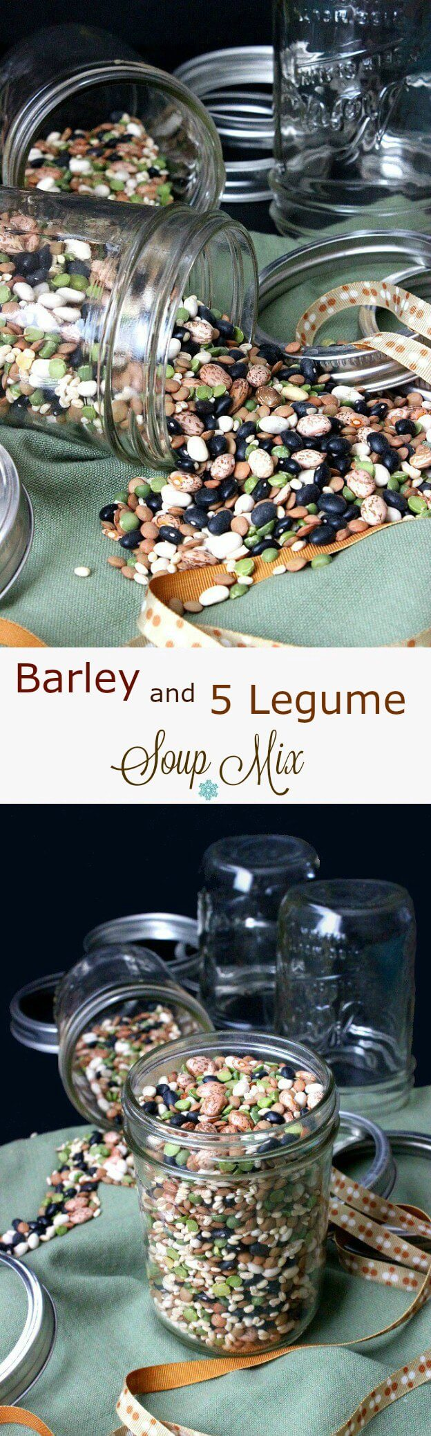 5 Legume Soup Mix with Barley is an easy and updated gift. Pretty on the counter or fill jars as gifts & attach the recipe. Recipe included!  Healthy dinner too! #beansoup #giftinajar
