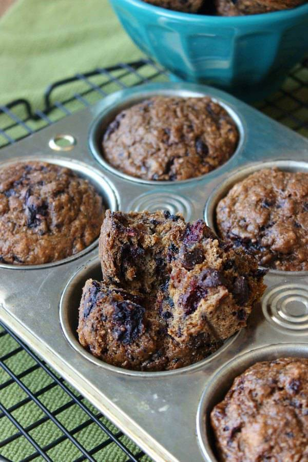 Black Forest Cherry Muffins in a muffin tin with one broken open so you can see the muffin packed full of cherries.