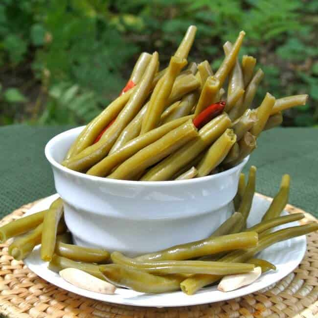 Spicy Pickled Green Beans and a straight on view of long green beans just ready for the picking out of a white bowl with red peppers peaking though.