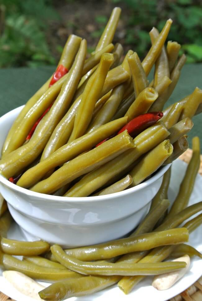 Spicy Pickled Green Beans have a very close angle of long green beans just ready for the picking out of a white bowl with red peppers peaking though.