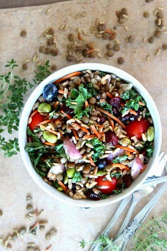 Superfood Salad with Maple Vinaigrette has every color of the rainbow in deep rich shades. Looking down from above with herbs, lentils and rice scattered around.