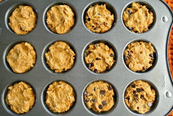 Easy Vegan Pumpkin Muffins are in their raw state but are filling 12 big muffins tins. Six have chocolate chips and six don't.