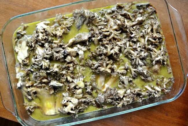 Overhead view of sliced mushrooms marinating in a glass casserole.