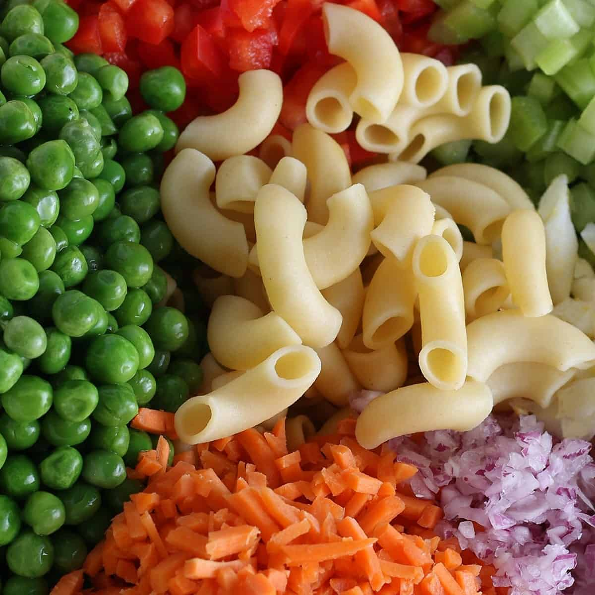A very closeup photo of prepared veggies with cooked macaroni in the center.