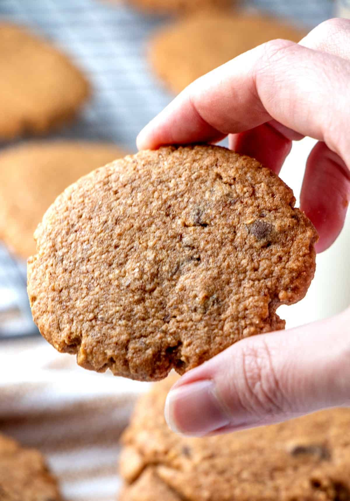 A hand holding up a single cookie.