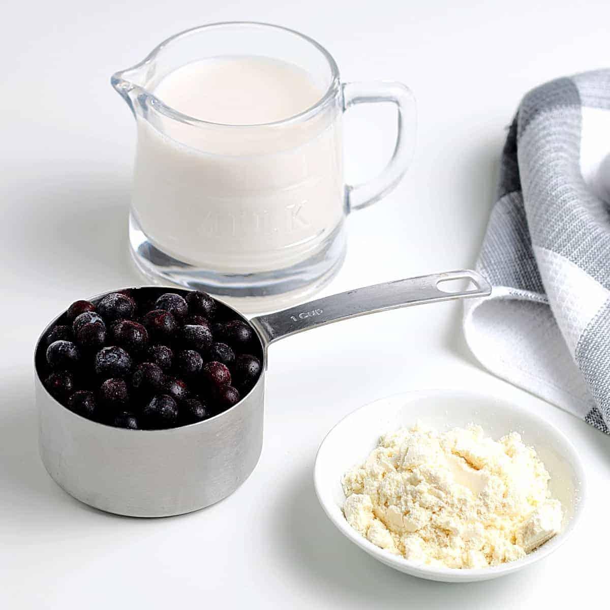 Three ingredients of blueberries, dairy free milk and vanilla protein powder.