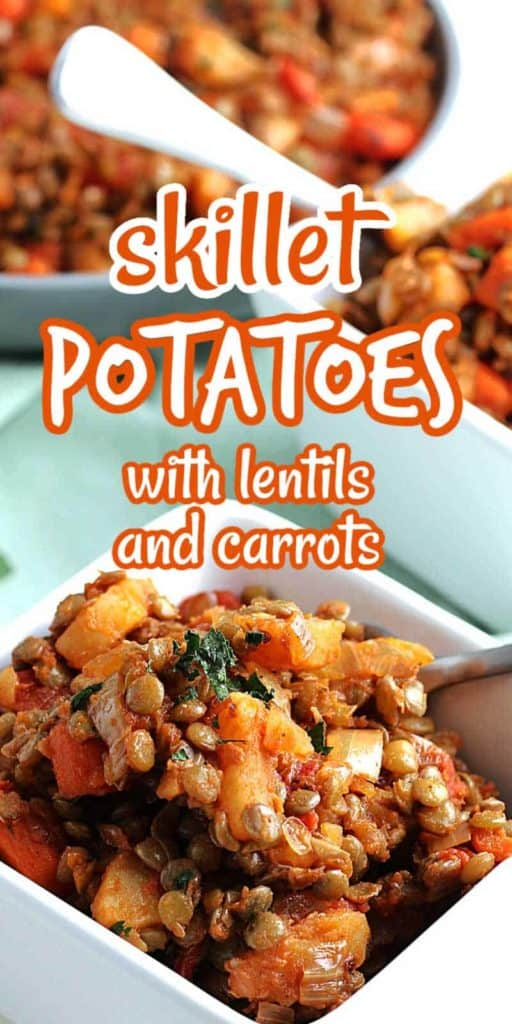 Small bowl in front filled with potatoes, lentils, carrots and tomatoes.